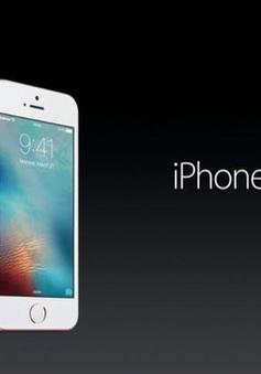 iPhone SE về Việt Nam: Giá khởi điểm 12 triệu?