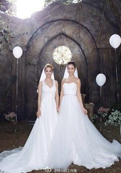 Điều gì khiến Lâm Tâm Như muốn kết hôn?