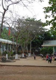 Điều tra thầy giáo bị tố xâm hại học sinh lớp 3