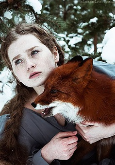Ngỡ ngàng bộ ảnh chụp với cáo đẹp như trong cổ tích