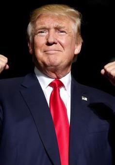 Donald Trump - Tổng thống thứ 45 của nước Mỹ