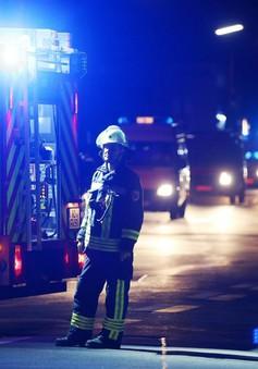 """Europol cảnh báo các vụ tấn công kiểu """"sói đơn độc"""""""