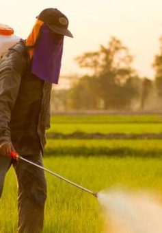 Châu Âu hạn chế sử dụng hóa chất diệt cỏ Glyphosate