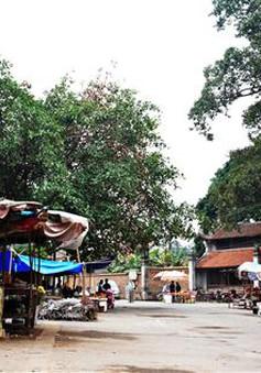 Vẻ đẹp bình dị của chợ quê làng cổ Đường Lâm