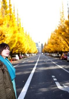 Cảnh sắc mùa thu với lá vàng, lá đỏ đẹp như tranh vẽ ở Tokyo