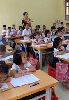 Có nên cho trẻ đi học chữ sớm trước khi vào lớp 1?