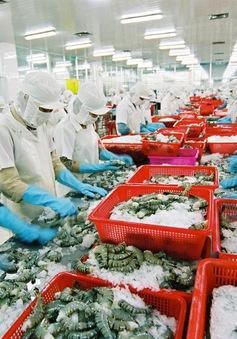 Kỳ vọng về xuất khẩu nông thủy sản năm 2016
