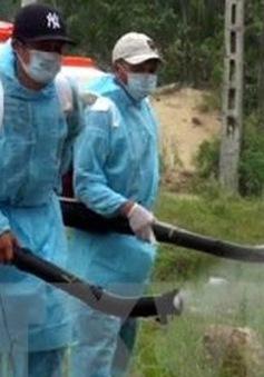 Việt Nam không ghi nhận thêm bệnh nhân nhiễm virus Zika