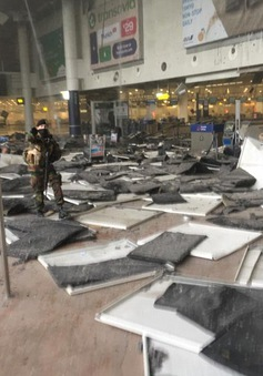 Brussels (Bỉ) hỗn loạn tột độ sau hàng loạt vụ nổ bom đẫm máu