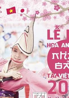 Lễ hội hoa anh đào 2016 sẽ diễn ra tại Hoàng thành Thăng Long