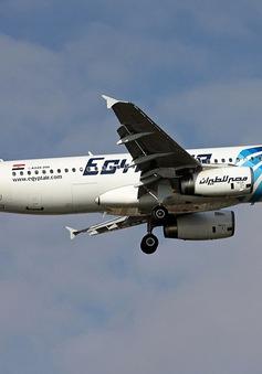 IS lên tiếng thừa nhận tấn công máy bay bị rơi của Ai Cập