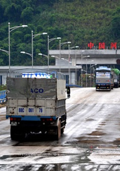 8.000 tấn vải tươi đã thông quan qua cửa khẩu Lào Cai