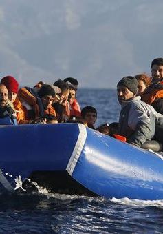 Thổ Nhĩ Kỳ mở chiến dịch bắt giữ người di cư