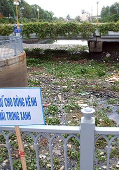 TP.HCM: Hơn 5 tấn rác xả xuống kênh Nhiêu Lộc - Thị Nghè mỗi ngày