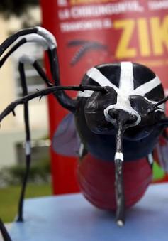 9 bệnh do muỗi truyền nguy hiểm không kém virus Zika