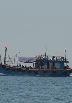 Quảng Bình yêu cầu kiểm tra việc tàu cá xả chất thải rắn