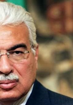 Cựu Thủ tướng Ai Cập thoát tội tham nhũng