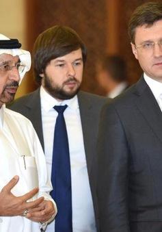 Nga, Saudi Arabia hướng tới hợp tác năng lượng