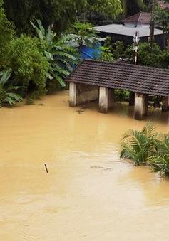 Khánh Hòa: Bé gái 18 tháng tuổi rơi xuống sông mất tích
