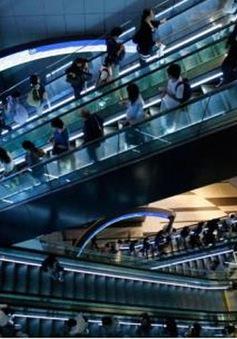 Nhật Bản thiếu nghiêm trọng chuyên gia an ninh mạng