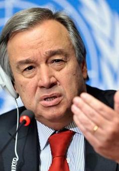 Cựu Thủ tướng Bồ Đào Nha gần chắc chắn thắng cử Tổng thư ký LHQ
