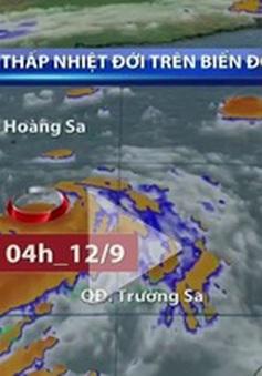 Ban Chỉ đạo phòng chống lụt bão Trung ương họp khẩn về áp thấp nhiệt đới