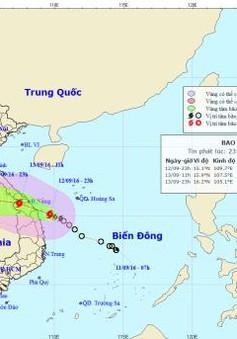 Sáng sớm 13/9, bão đổ bộ từ Thừa Thiên Huế-Quảng Ngãi