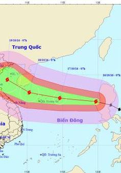 Bão Sarika vào Biển Đông trở thành cơn bão số 7