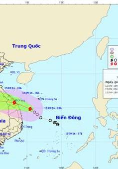 Người dân miền Trung tích cực chuẩn bị ứng phó với bão