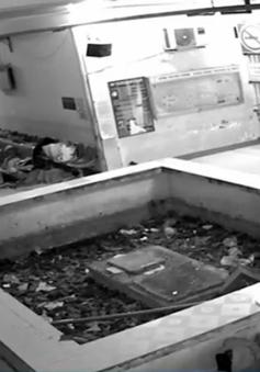 Bắt quả tang đối tượng chuyên đánh thuốc mê trộm tiền người nhà bệnh nhân