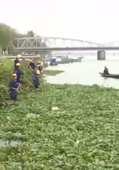 TT-Huế ra quân xử lý vấn nạn bèo tây trên các dòng sông