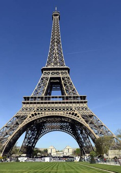Công viên trước tháp Eiffel tạm thời đóng cửa để đặt bẫy diệt chuột