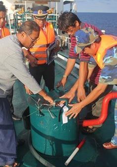 """""""Nóng"""" tình trạng buôn lậu xăng dầu trên biển Kiên Giang"""