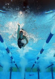 Olympic Rio 2016: Những điều cần biết về môn bơi!
