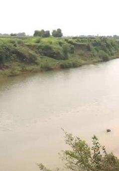 Vụ cá chết trên sông Bưởi: Đại diện nhà máy đường nhận trách nhiệm