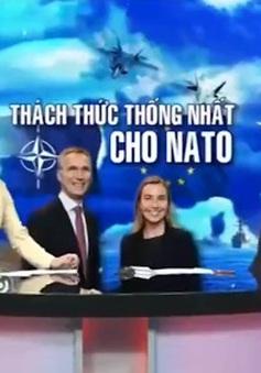 """""""Mỹ không thể xem nhẹ hoặc xóa bỏ NATO"""""""