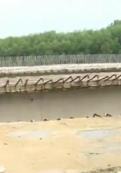 Lãng phí vốn ngân sách với hàng loạt cây cầu dang dở tại Quảng Trị