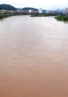 Hà Nội chưa chọn đơn vị nào lập quy hoạch 2 bên bờ sông Hồng