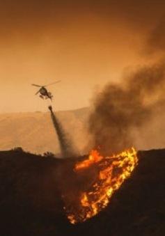 Cháy rừng nghiêm trọng tại Los Angeles, Mỹ