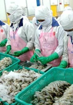 Mỹ và Australia siết chặt kiểm soát thủy sản Việt Nam