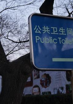"""Tốc độ WiFi cao """"ngất ngưởng"""" tại WC công cộng Trung Quốc"""