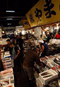Kế hoạch chợ cá mới ở Tokyo vướng vì nguồn nước ô nhiễm