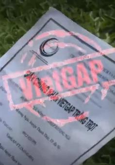 Khi chứng nhận VietGap trở thành một món hàng