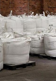 Australia bắt giữ lượng ma túy kỷ lục