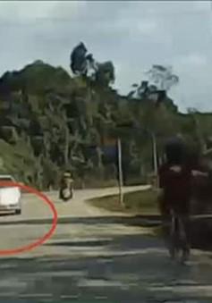 Xe con chạy ẩu không chấp hành luật giao thông