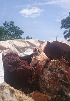 Đà Nẵng: Phát hiện vụ chôn lấp hàng trăm tấn chất thải nghi độc hại
