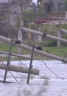 Thái Bình: Nhiều cột điện gãy đổ sau bão số 1 do chưa đủ tiêu chuẩn