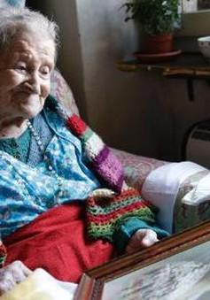 Cụ bà cao tuổi nhất thế giới sống lâu nhờ ăn trứng thường xuyên