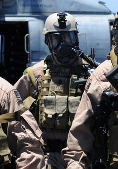Mỹ điều thêm đặc nhiệm tham gia tiêu diệt IS ở Iraq