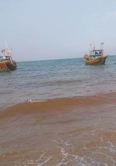 Sự kiện trong nước nổi bật tuần qua: Tập trung khắc phục hậu quả hải sản chết bất thường